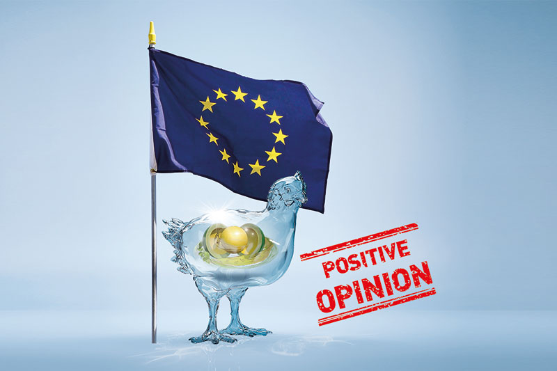 BIOMIN ANNOUNCES POSITIVE EFSA OPINION FOR DIGESTAROM® DC AS ZOOTECHNICAL ADDITIVE FOR POULTRY