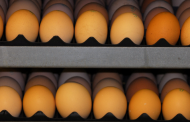 Simply put, cracked eggs do not sell