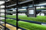 CubicFarms to accelerate global sales of HydroGreen automated livestock feed systems with new reseller agreement