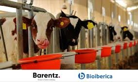 Bioiberica expands its partnership with Barentz to distribute animal nutrition ingredients in Europe