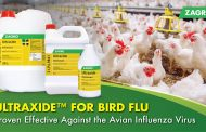 Ultraxide™ Disinfectant Against Bird Flu