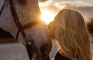 Alltech introduces new Lifeforce™ premium equine supplements