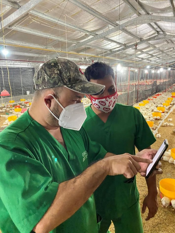 New Features in Cobb Flock Management App Bring Expertise and Support to More Customers