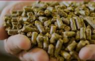 Barentz Acquires Pestell Nutrition Inc. in North America