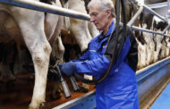 DeLaval introduce new parallel parlour system P100