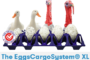 A brand new system for duck and turkey egg transportation