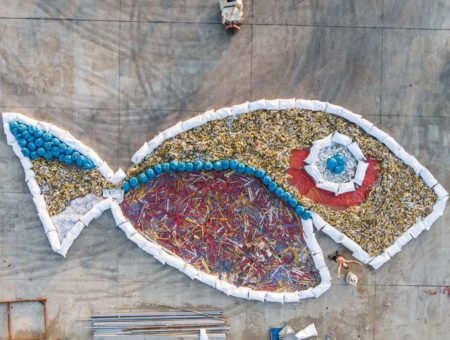 Healthy fish need clean water